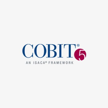 COBIT® 5 Implementation